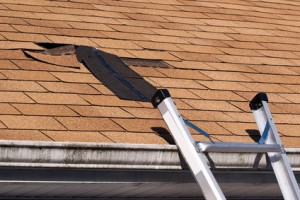 New York Roof Repair Specialists